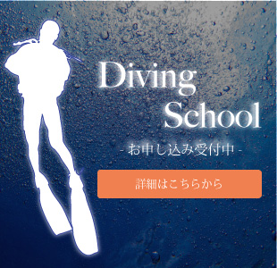 divingSchool